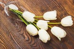 Vinglas med vita tulpan Royaltyfri Fotografi