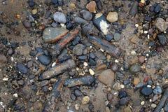 Vingt millimètres ont dépensé des coquilles de canon de perforation dans le sable Photos stock