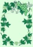 Vinha abstrata com frame das folhas Fotografia de Stock Royalty Free