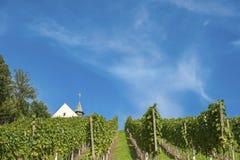 Vinhedo com Jacobus Chapel em Gengenbach Imagens de Stock