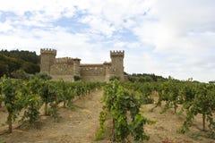 Vinhedo da uva com castelo Foto de Stock Royalty Free