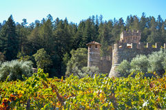 Vinhedo e castelo em Napa Valley Foto de Stock Royalty Free