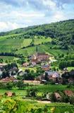 Vinhedo e vila pequena em Alsácia - France Fotos de Stock Royalty Free