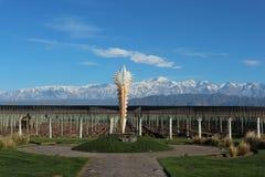 Vinhedo em Mendoza, Argentina Imagens de Stock