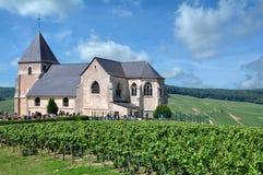 Vinhedo na região de Champagne, Epernay, França foto de stock royalty free