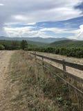 Vinhedos, Cáucaso, plantações, natureza, céu, agricultura imagem de stock