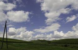 Vinhedos, Daruvar, Croácia Foto de Stock
