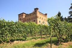 Vinhedos e castelo de Grinzane Cavour. Fotografia de Stock Royalty Free