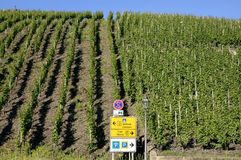 Vinhedos e sinais de tráfego no Moselle, Alemanha Imagens de Stock Royalty Free