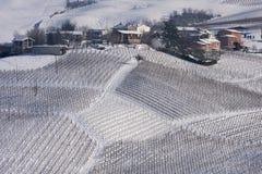 Vinhedos e vila do inverno fotografia de stock royalty free