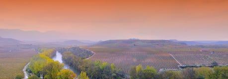 Vinhedos em La Rioja, Spain fotografia de stock