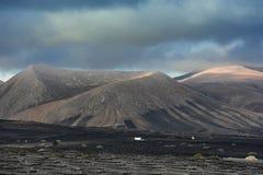 Vinhedos no vale de Geria do La, ilha de Lanzarote, Ilhas Canárias, fotografia de stock