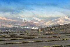 Vinhedos no vale de Geria do La, ilha de Lanzarote, Ilhas Canárias, imagens de stock