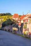Vinhedos por Alsácia Imagem de Stock