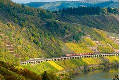 Vinhedos, trem e floresta Foto de Stock Royalty Free