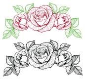 Vinheta da flor de Rosa Imagens de Stock Royalty Free