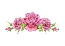 Vinheta horizontal da aquarela das rosas Fotos de Stock
