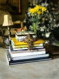 Vinheta interior dos livros do projeto da decoração da casa imagens de stock