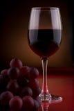 Vinho 1 Foto de Stock