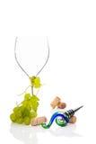 Vinho. Imagem de Stock