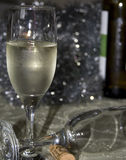 Vinho Fotografia de Stock