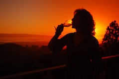 Vinho bebendo Imagem de Stock Royalty Free