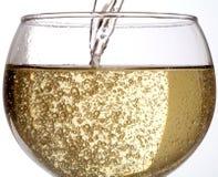 Vinho bebendo - Champagne Fotografia de Stock Royalty Free