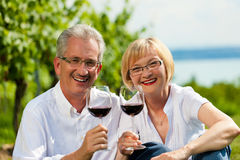 Vinho bebendo dos pares felizes no lago no verão Fotografia de Stock