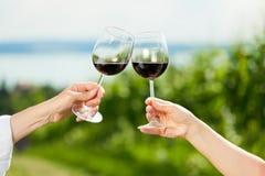 Vinho bebendo dos pares felizes no lago no verão Imagens de Stock Royalty Free