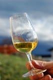 Vinho branco fotos de stock royalty free