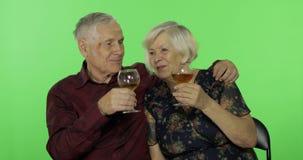Vinho branco bebendo envelhecido superior do homem com um companheiro idoso da mulher na chave do croma video estoque