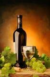 Vinho branco com uvas frescas Fotografia de Stock