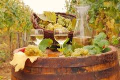 Vinho branco e uva Imagem de Stock Royalty Free
