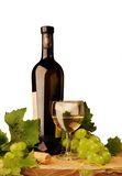 Vinho branco e uvas Foto de Stock