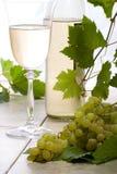 Vinho branco e uvas Foto de Stock Royalty Free