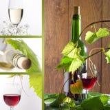 Vinho branco e vermelho Imagens de Stock