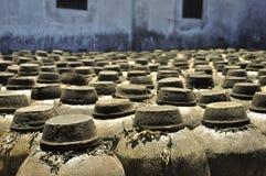 Vinho chinês Fotografia de Stock