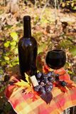 Vinho com as uvas no outono fotos de stock royalty free