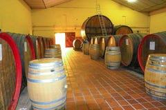 Vinho de casa Fotografia de Stock Royalty Free