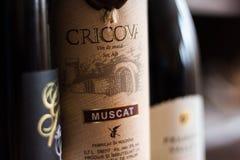 Vinho de Cricova Foto de Stock Royalty Free