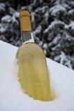 Vinho de refrigeração Fotos de Stock