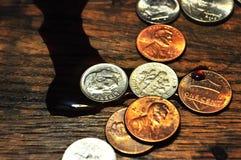 Vinho derramado sobre sobre às moedas dos E.U. fotografia de stock