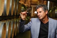 Vinho do gosto do homem em um adega-Winemaker Fotos de Stock Royalty Free