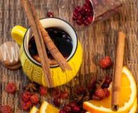 Vinho e composição secada dos frutos Foto de Stock Royalty Free