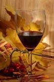 Vinho e folhas Imagem de Stock Royalty Free
