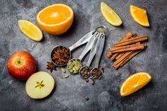 Vinho e ingredientes ferventados com especiarias Imagens de Stock Royalty Free