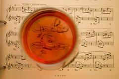 Vinho e música Fotografia de Stock Royalty Free