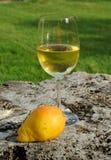 Vinho e pera Imagem de Stock