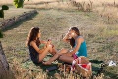 Vinho e piquenique Imagem de Stock Royalty Free