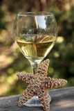Vinho e praia Imagem de Stock Royalty Free